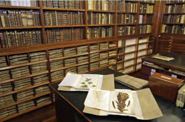 Part of Linnaeus' herbarium and library in the strongroom at the Linnean Society