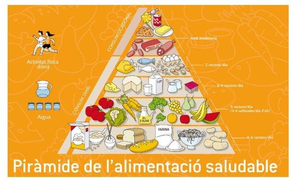 Resultat d'imatges de piràmide de l'alimnetació saludable per pintar