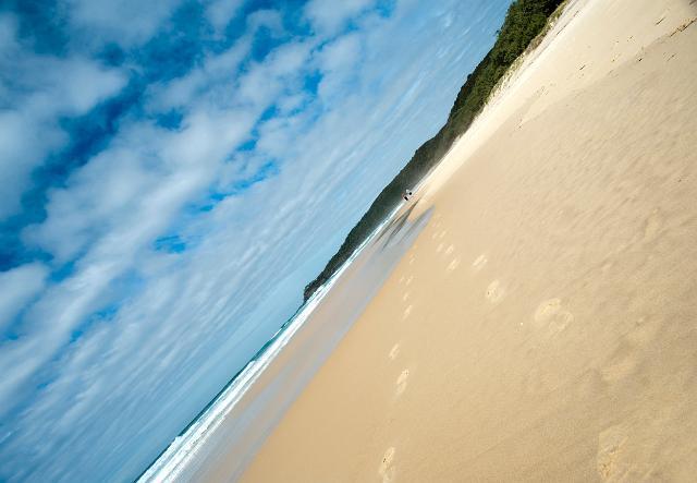 Imatge de freeaussiestock.com sota llicència CC BY