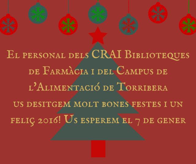 christmas! (2)
