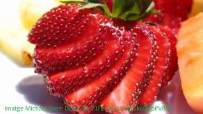 Fruita.png